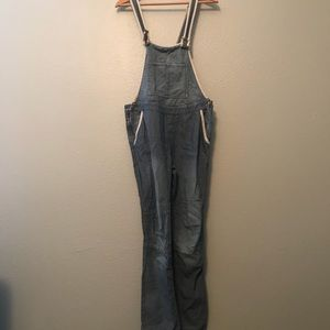 Free People Denim Striped Overalls